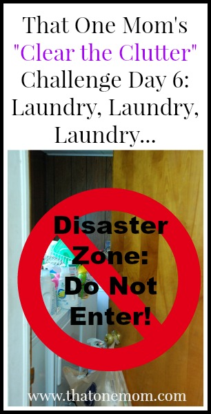 Clear the Clutter Challenge Day 6: Laundry, Laundry, Laundry... www.thatonemom.com