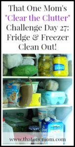 Clear the Clutter Challenge Day 27:  Fridge & Freezer Clean Out!