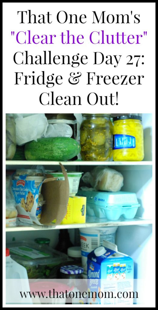 Clear the Clutter Challenge Day 27: Fridge & Freezer Clean Out! www.thatonemom.com