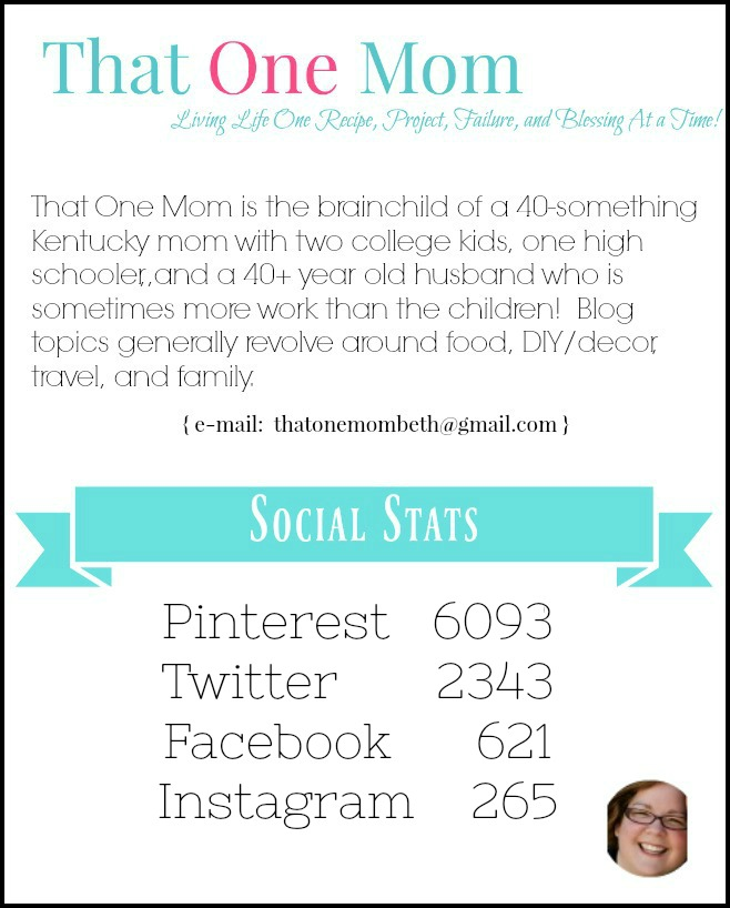 Media Kit and Stats www.thatonemom.com