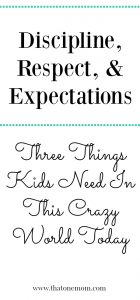 Discipline, Respect, & Expectations: Three Things Kids Need In This Crazy World Today